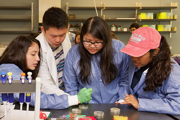 Biological Sciences and Chemistry
