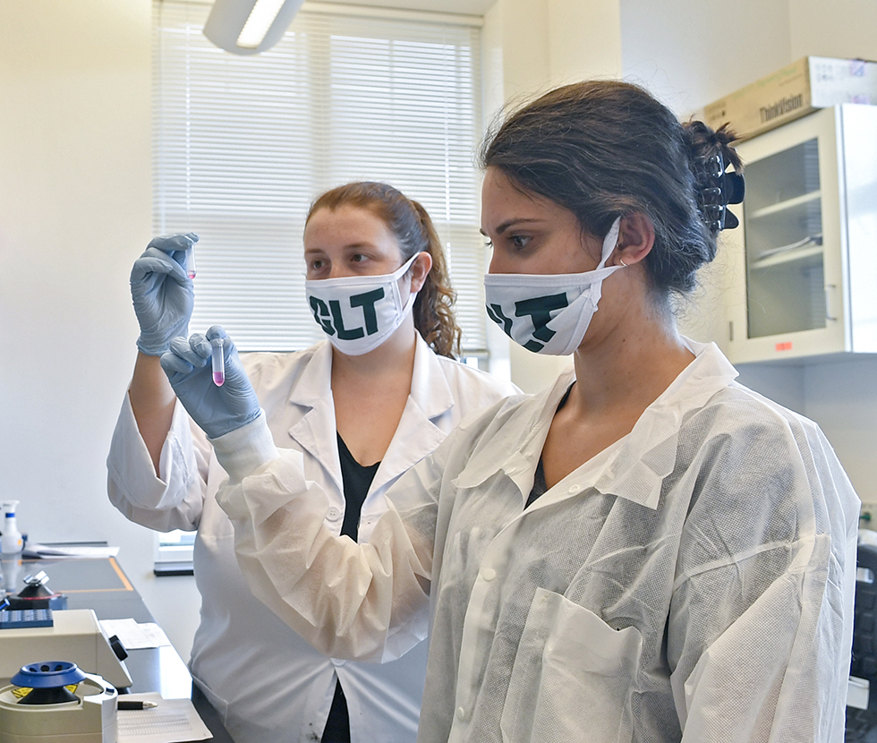 UNC Charlotte students in lab